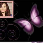 Fotomontaje de mariposa gratis
