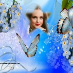 Fotomontaje de flores y mariposas