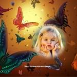 Bello fotomontaje de mariposas