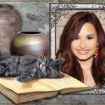 Fotomontaje de gatito tierno sobre libro