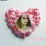 Fotomontaje de corazón con pétalos de rosa