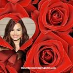 Fotomontaje de capullos de rosas