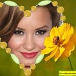 Fotomontaje de corazón con piedras y flor