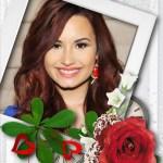 Romántico fotomontaje con rosa roja y jazmines