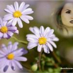 Fotomontaje con flores lilas
