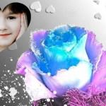 Fotomontaje de rosa de fantasía
