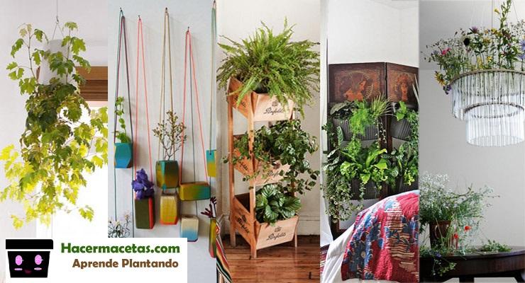 macetas para plantas de interior