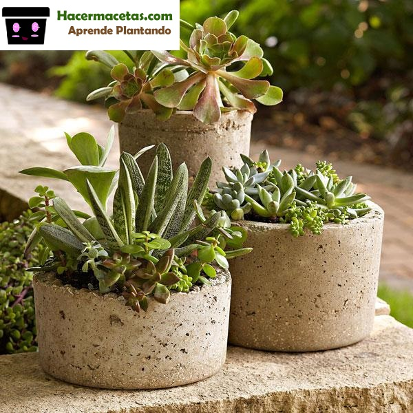 Como hacer macetas de cemento de manera muy f cil en casa for Casas decoradas con plantas naturales
