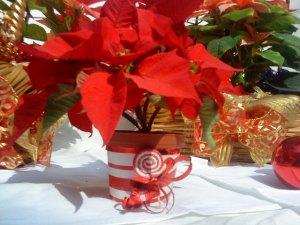 macceta decorada 23