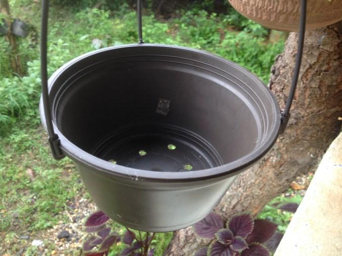 maceta para plantas colgantes