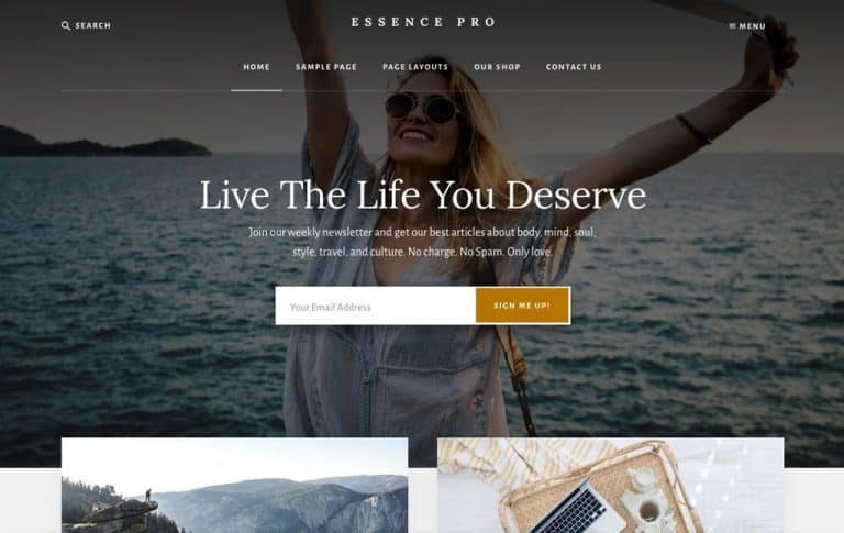 Top 60 Best WordPress Themes for Travel Blogs (2019)