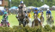 The Willowdale Steeplechase: Raising the Bar on Mother's Day Weekend