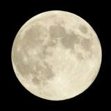中秋の名月と仲秋の名月 どっちが正しいの?2015年には中秋の名月がない!?