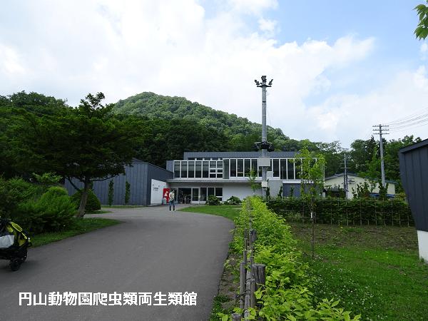 円山動物園爬虫類両生類館