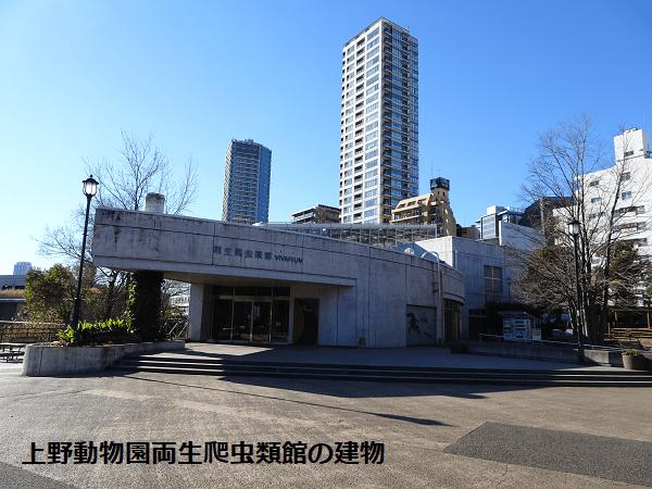 上野動物園両生爬虫類館の建物
