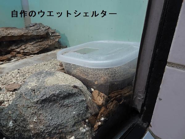 東山動物園自然動物館の自作のウエットシェルター