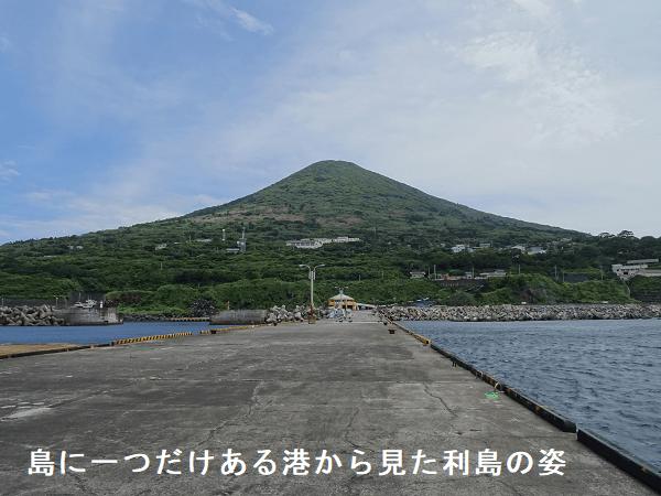 島に一つだけある港から見た利島の姿