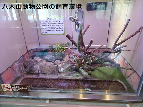 八木山動物公園の飼育環境