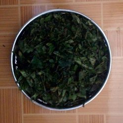 Bruised young tea leaves