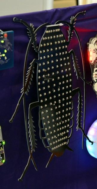 51-cockroach