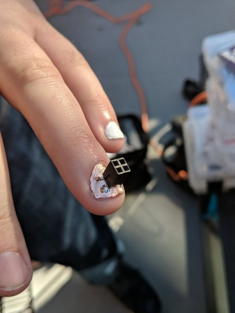 @JunesPhD added a Shitty Add-On connector to his fingernail