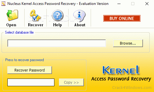 Nucleus Kernel Access Password Recovery 4.02 Crack Full Version