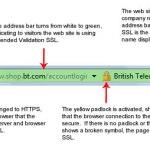 EV SSL Ceritficate Example