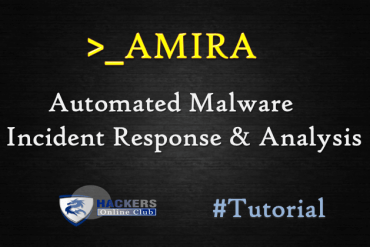 AMIRA Malware Analysis