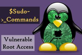 Linux Sudo Bug