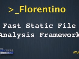 Florentino File Analysis Framework