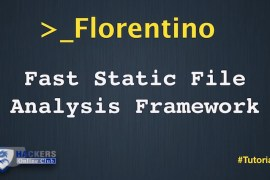 Florentino File Analysis Framework