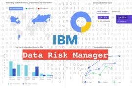IBM Data Risk Manager