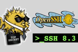 OpenSSH 8.3