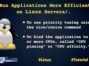 Applications on Linux Server