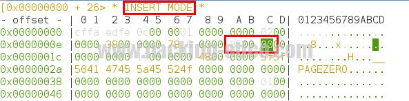 Radare2 - Insert mode