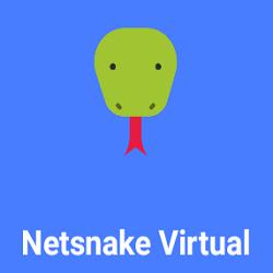 NetSnake Virtual Apk