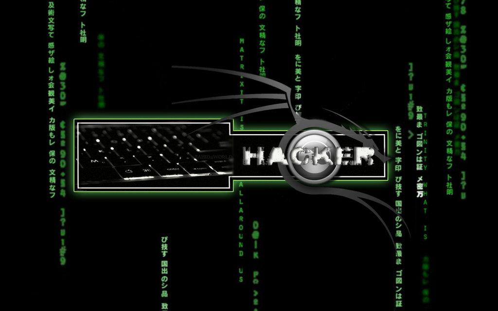 matrix_hacker_by_zahid4worldd3dyf5r  hackmyass