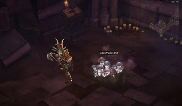 Diablo 3 : Le champignon Noir