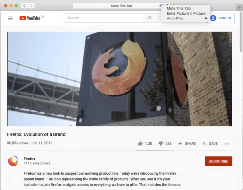 """The Safari web browser playing a video, with the context menu for the audio toggle in the address bar displayed. """"Enter Picture in Picture"""" is one of the menu items."""