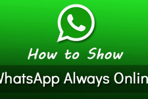 Whatsapp Always Online Status