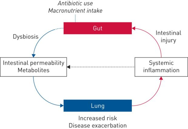 Respiratory failure and the gut-lung axis