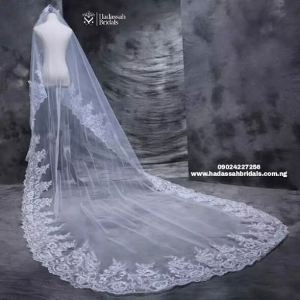 long cathedral veil with full applique back