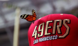 49ers_by_angelaela-d4l09a0