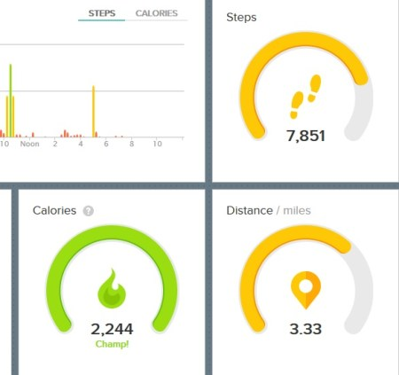 fitbit-day2