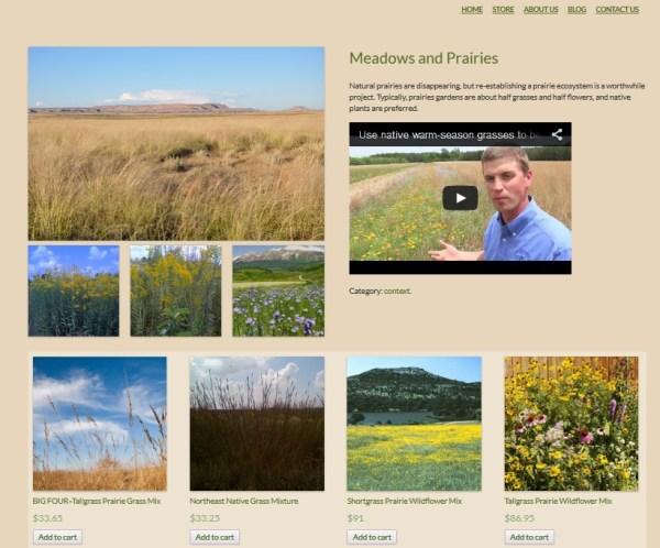 hwf-meadows