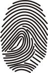 fingerprint-for-video-d