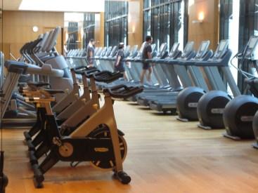 The fantastic gym