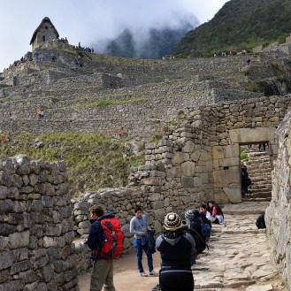 Machu Picchu inside the ruins