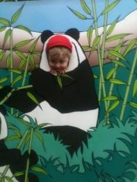 Jo en panda