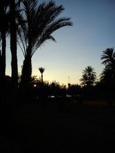 Pullman Marrakech La Palmeraie (9)